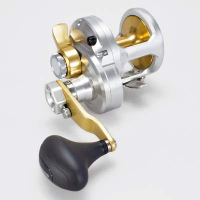 Shimano Talica 12 Lbs 2 Speed Multirolle mit Schiebebremse (2 Gang)