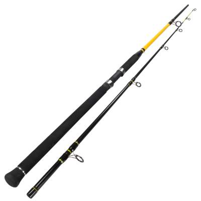Team Deep Sea Unbreakable Special Pilk 2,70m 50- 160g