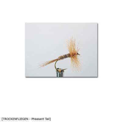 X-Version Fly Trockenfliege PHEASANT TAIL 12