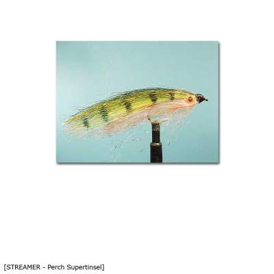 X-Version Fly Streamer PERCH SUPERTINSEL 10