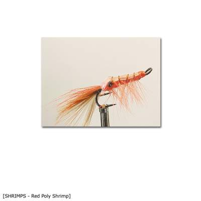 X-Version Fly Red Poly Shrimp 6