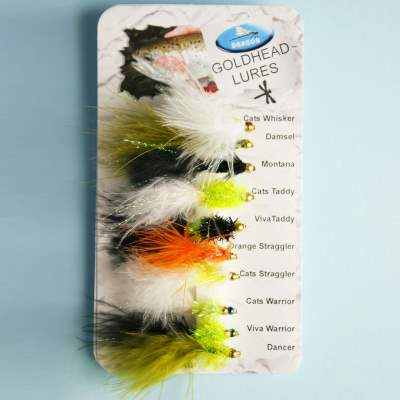 X-Version Fly Fliegenset: GOLDHEAD LURES