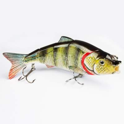 Roy Fishers Hecht Swimbait 16cm Barsch