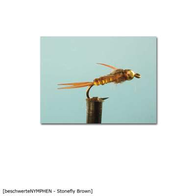 X-Version Fly Beschwerte Nymphe STONEFLY BROWN 12