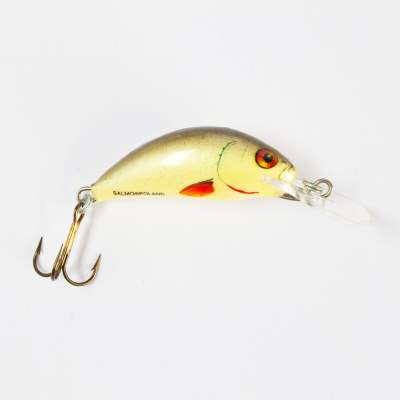 Salmo Hornet Wobbler floating 3,5cm D