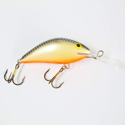 Salmo Hornet Wobbler floating 6,0cm GS