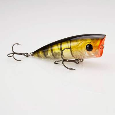 Senshu Excape Pop 61 ghost perch