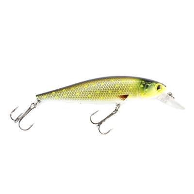 Viper Pro Rolling Shad 10,0cm Mad Pike