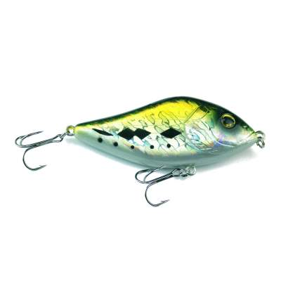Green Flash Minnow