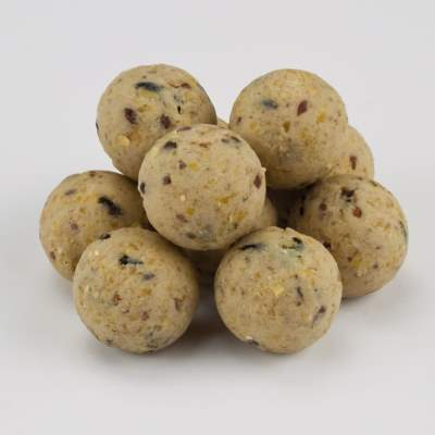 X2 Excellence Boilies Garlic Nut 15mm 2,5Kg