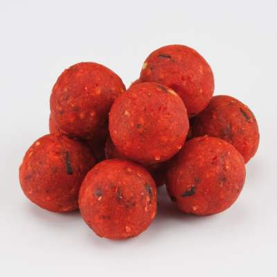 X2 Excellence Boilies Birdfood Berry 15mm 2,5Kg